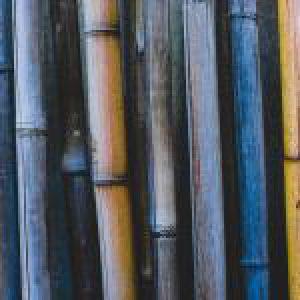 World of Bamboo PREMIUM